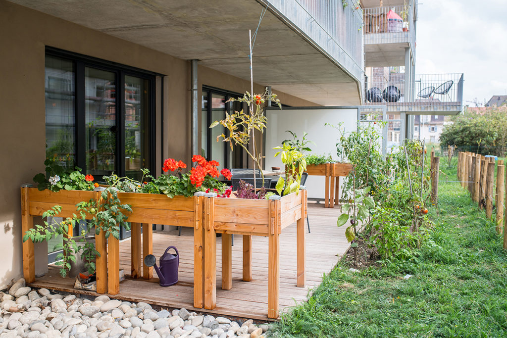 Projet habitat inclusif Khutte Strasbourg jardin